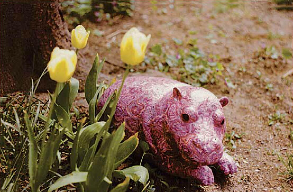Paisley Hippo