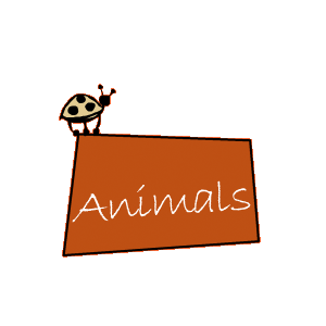 home-link-animals