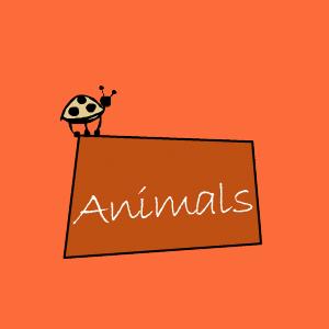 home-link-animals